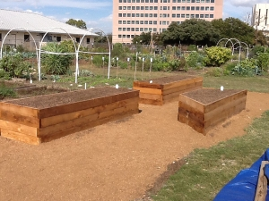 Three new raised beds  					with wicking technology allow easy access to gardeners with disabilities.